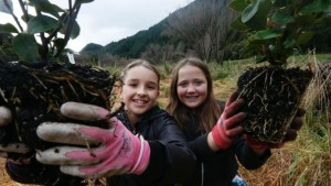 Mighty effort sees 4000 new trees planted in Maitai Valley