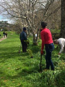 Hanby Park Planting September 2017