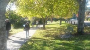 Walkers Unite call for dedicated Maitai walkway